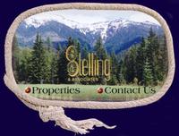 STELLING & ASSOCIATES Logo